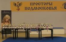 Просторы Подмосковья 2011
