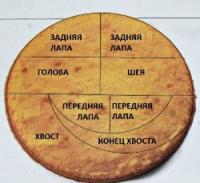 Схема праздничного торта для Дракона