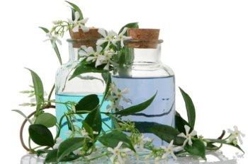 Цветок жасмина в парфюмерии – Восток и Запад в одном флаконе